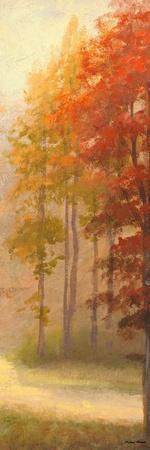 https://imgc.artprintimages.com/img/print/fall-trees-i_u-l-pxk5t70.jpg?p=0