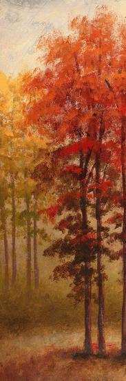 Fall Trees II-Michael Marcon-Premium Giclee Print