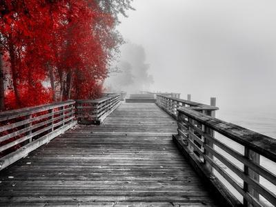 https://imgc.artprintimages.com/img/print/fall-walkway_u-l-q1bkq7i0.jpg?p=0