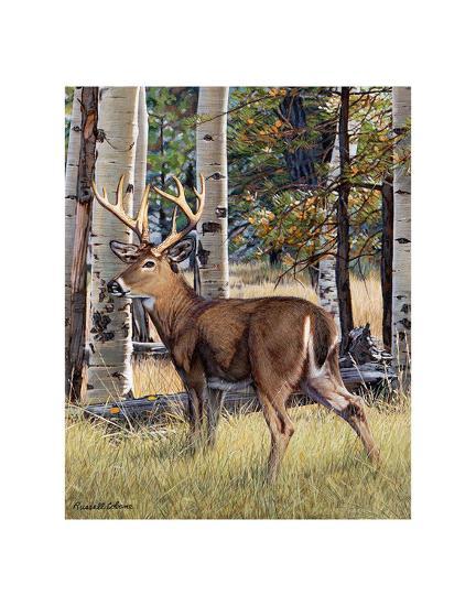 Fall Whitetail-Russell Cobane-Art Print