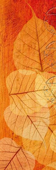 Falling Leaves II-Malcolm Sanders-Giclee Print