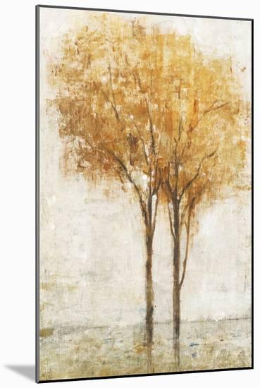 Falling Leaves II-Tim O'toole-Mounted Art Print