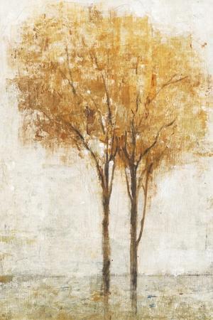 https://imgc.artprintimages.com/img/print/falling-leaves-ii_u-l-q11ayt50.jpg?p=0