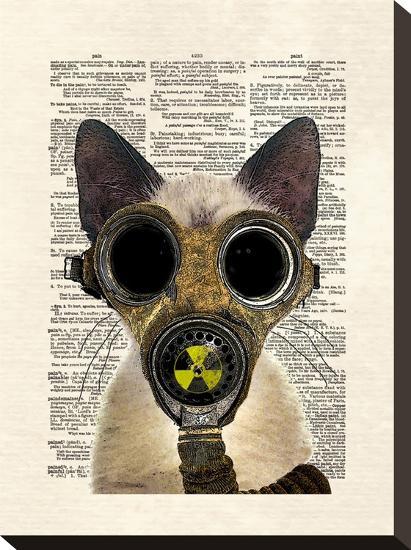 Fallout-Matt Dinniman-Stretched Canvas Print