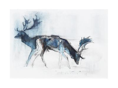 Fallow Bucks, Richmond, 2006-Mark Adlington-Giclee Print