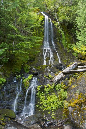 Falls Creek Falls, Mount Rainier National Park, Washington, USA-Michel Hersen-Photographic Print