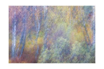 Falls Fire-Doug Chinnery-Giclee Print