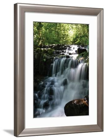 Falls in the Forest II-Brian Moore-Framed Photographic Print