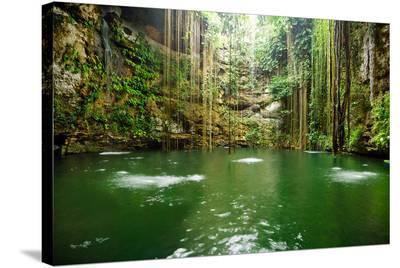Falls Near Chichen Itza Mexico--Stretched Canvas Print