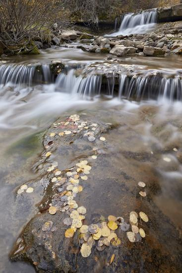 Falls on the Big Bear Creek in the Fall-James Hager-Photographic Print