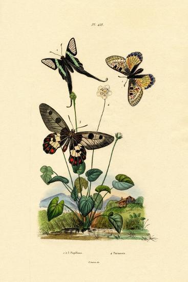 False Apollo, 1833-39--Giclee Print