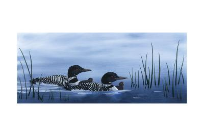 Family of Loons-Kestrel Michaud-Giclee Print