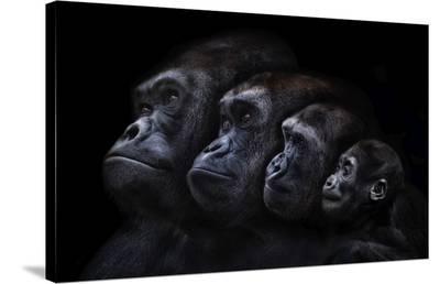 Family Portrait (Conversation Piece)-Pedro Jarque-Stretched Canvas Print