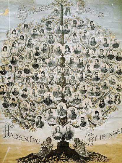 Family Tree of the Imperial Dynasty of the Habsburgs--Giclee Print