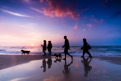 https://imgc.artprintimages.com/img/print/family-walk-on-the-beach-at-sunset_u-l-q103s140.jpg?p=0