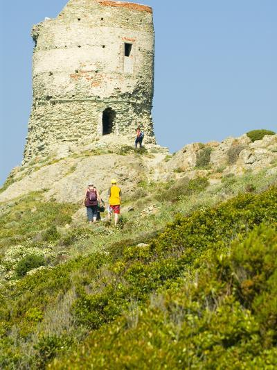 Family Walking in Blooming Maquis to Genoese Tower, Le Sentier Des Douaniers, Cap Corse-Trish Drury-Photographic Print
