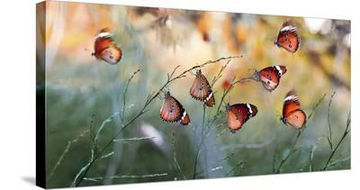 Family-Mustafa ozturk-Stretched Canvas Print