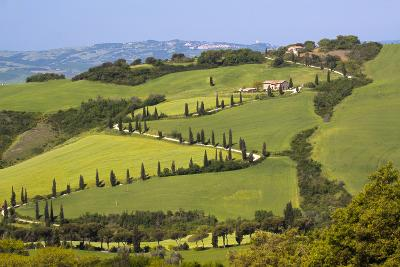 Famous Road Winding Through the Tuscan Hillside, Italy-Terry Eggers-Photographic Print
