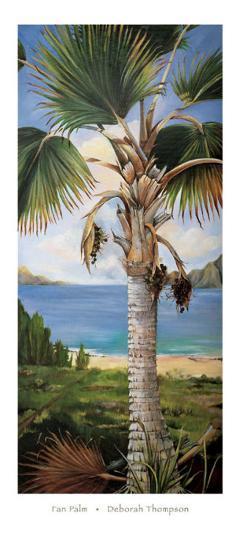 Fan Palm-Deborah Thompson-Art Print