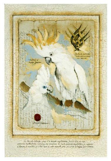 Fanako le Cacatoes-Pascal Cessou-Art Print