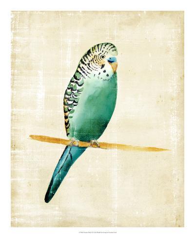 Fanciful Birds II-Chariklia Zarris-Giclee Print