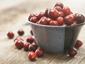 Bowl of cranberries by Fancy