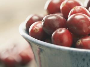 Cranberries in a bowl by Fancy