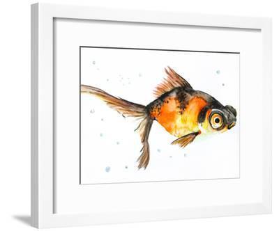 Fancy Goldfish-Allison Gray-Framed Art Print