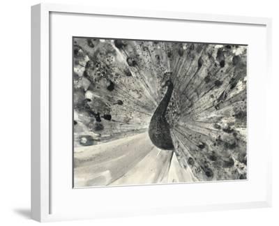 Fanfare-Albena Hristova-Framed Art Print