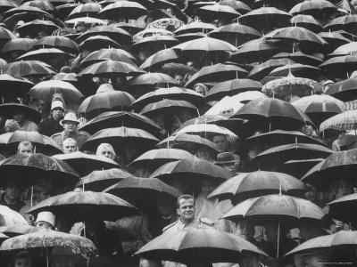 Fans, Sitting in Rain, at Purdue Homecoming Game-Francis Miller-Photographic Print