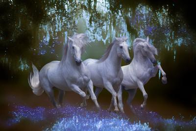 https://imgc.artprintimages.com/img/print/fantasy-horses-05_u-l-q10pcts0.jpg?p=0