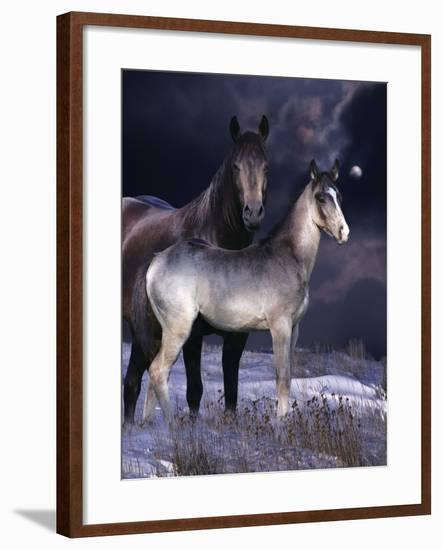 Fantasy Horses 27-Bob Langrish-Framed Photographic Print