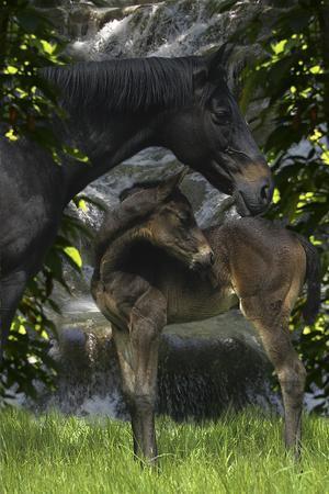 https://imgc.artprintimages.com/img/print/fantasy-horses-29_u-l-q10peb00.jpg?p=0