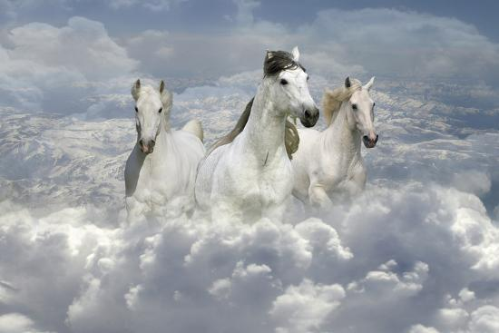 Fantasy Horses 41-Bob Langrish-Photographic Print
