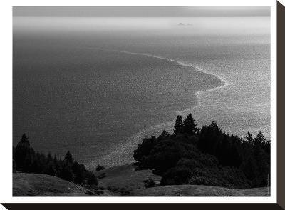 Farallons #5-Murray Bolesta-Stretched Canvas Print