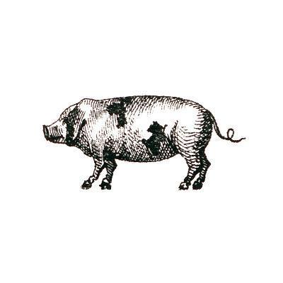 Farm Animal Icons II-Sue Schlabach-Art Print
