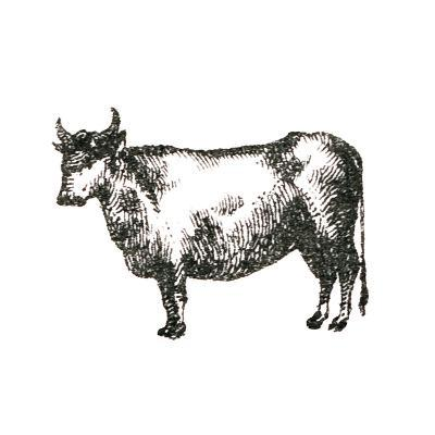 Farm Animal Icons IV-Sue Schlabach-Art Print