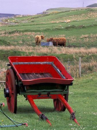 https://imgc.artprintimages.com/img/print/farm-animals-and-wheelbarrow-kilmuir-isle-of-skye-scotland_u-l-p4hu0q0.jpg?p=0
