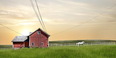 Farm & Country IV-James McLoughlin-Photographic Print