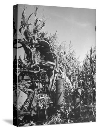Farm Equipment Harvesting Corn on a Farm