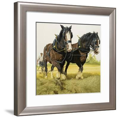 Farm Horses-David Nockels-Framed Giclee Print