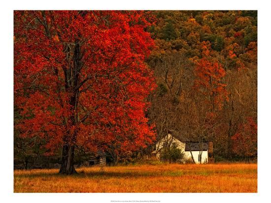 Farm House on a Autumn Morn'-Danny Head-Art Print
