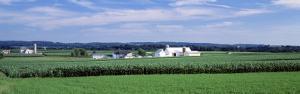 Farm, Lancaster County, Pennsylvania, USA