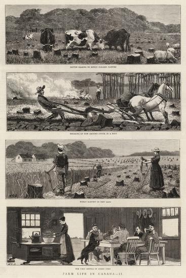 Farm Life in Canada, II-John Charles Dollman-Giclee Print