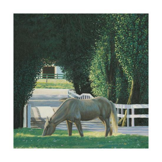 Farm Life VI-James Wiens-Art Print
