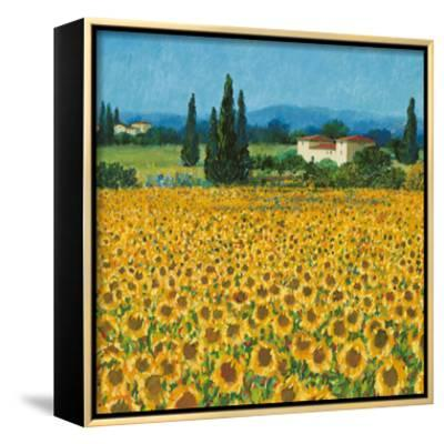 Farm Near Siena-Hazel Barker-Framed Canvas Print