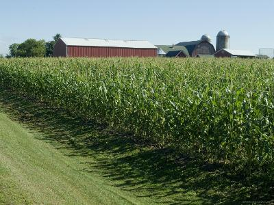 Farm, North Wood Park, Wisconsin, USA-Ethel Davies-Photographic Print