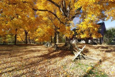 Farm Road Autumn Scenic, New Jersey-George Oze-Photographic Print