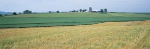 Farm Silos in an Oat Field, Iowa, USA