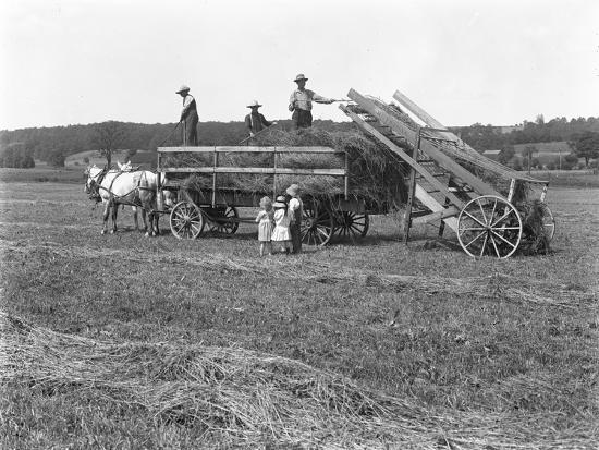 Farm Workers Loading Hay on to Horse-Drawn Hay Wagon as Three Children Watch-William Davis Hassler-Photographic Print